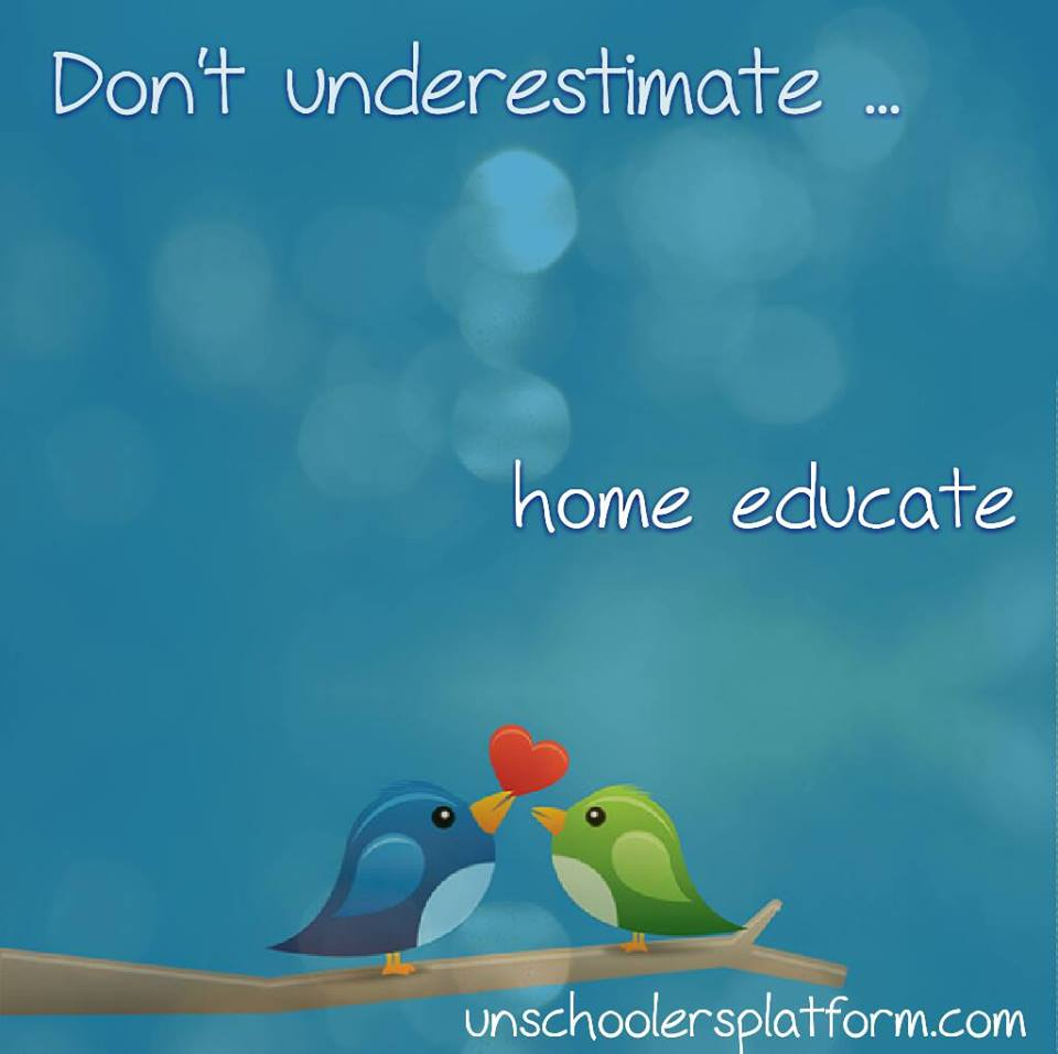 UP_home educate